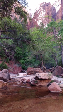 ZION_Narrows1